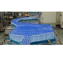 Bottle Conveying System - Accumulation